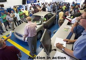 auction_in_action